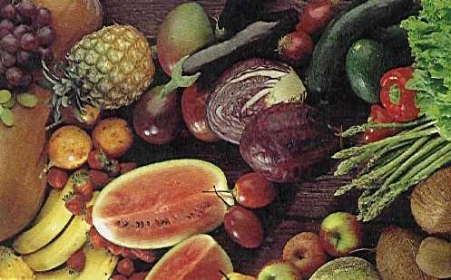 Proyecto biosfera for Semillas de frutas y verduras