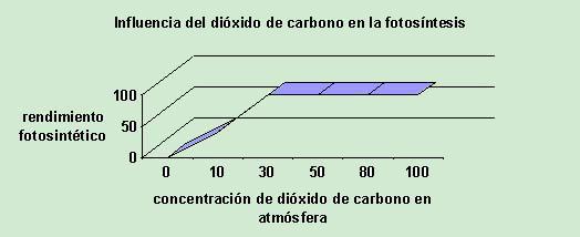 Influencia del di?xido de carbono en la fotos?ntesis