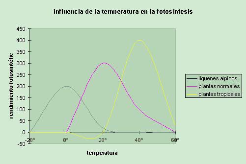 Influencia de la temperatura en la fotos?ntesis