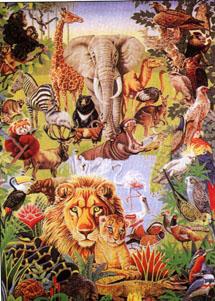 Para estudiar la gran variedad de seres vivos existente es imprescindible su clasificación.